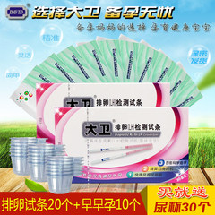 David ovulation test paper 20 + 10 early pregnancy pregnancy test strip urine pregnancy test pregnancy pregnant