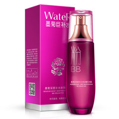Yizhichun blakish chrysanthemum water depth BB Cream Concealer makeup pink nourishing beauty isolation cushion BB Cream