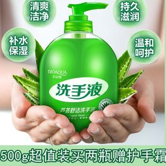 Hand sanitizer 500g home foam plant antibacterial delicate fragrance Aloe Moisturizing family liquid bottle Buy 2 complimentary Hand Cream