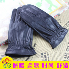 Colorful soft dream men's autumn and winter gloves, free mail sheepskin fabric, silk slip, warm inside fashion mail