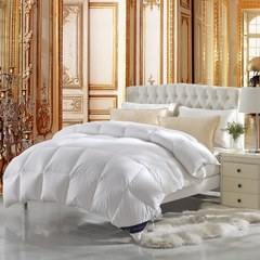 五星级酒店全棉冬被加厚羽绒被子 单双人学生保暖冬被白鸭绒被芯 150x200cm(750g白鸭绒) 经典羽绒被-白