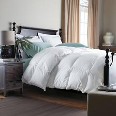 秋冬季保暖被芯加厚羽绒被白鸭绒被五星级酒店被子单双人被空调被 200X230cm 2.5KG90%白鸭绒