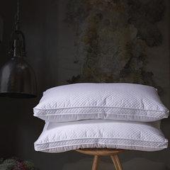 MA. Pierre, silk / silk fiber pillow care pillow / super soft silk soft pillow genuine beauty Silk pillow