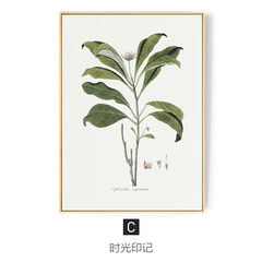 The story of modern minimalist living plant leaf decorative painting sofa backdrop wall paintings art decoration green restaurant 73*103 34mm thickness C: time stamp Single price of leaf plant language