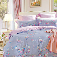 Much like the genuine winter 16 new sanding thickened cotton four piece suite sanding warm cotton bed 1.5m (5 feet) bed