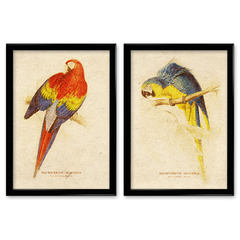 Sitting room adornment mural paintings of birds Home Furnishing indoor wall sofa backdrop modern painting box C084 420*480mm Other types Oil film laminating + low reflective organic glass