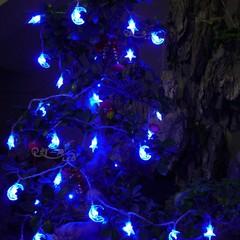 24V low voltage 110V American transformer, LED Christmas lights string, moon star camping lights hanging on the tree decorative lights 20 meters belt transformer 220 turn 24V