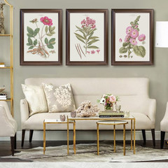 American modern simple garden living room sofa, background wall decoration painting, restaurant bedroom, plant pink flower hanging painting 52*70 Coffee frame (thick 3.5cm) D Independent