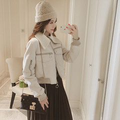 Autumn style new 2017bf wind thickening hair collar suede coat short sleeve long Korean women's slim and suede jacket M Apricot