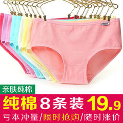 Eight MS cotton fabric underwear size waist flawless girl sexy Lace Waist triangle Large size (110 Jin -135 Jin) 8 sets of pure cotton