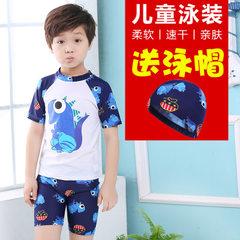Children`s swimsuit boys` split swimsuit lovely baby baby hot spring bathing suit for children 2306 white dinosaurs m