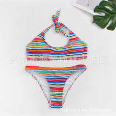 2018 new bikini color stripes in Europe and the United States with split swimsuit -H001 As shown in figure s.