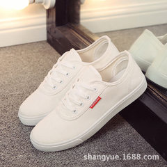 2018 new flat bottom lace-up canvas shoes women special wholesale white shoes Korean version leisure white 35