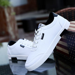 Hot style classic student canvas shoes men`s fashion small white shoes breathable college wind sport white 39