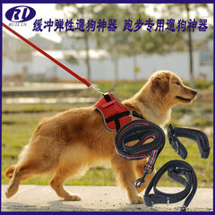 Manufacturers direct pet traction rope running traction belt buffer elastic walking dog rope high qu yellow 10 mm