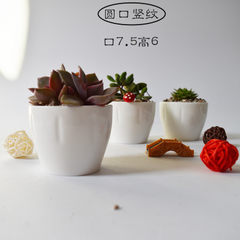 Creative white multi-meat ceramic flowerpot tabletop small round mouth thumb basin Zakka potted pott Round mouth vertical stripes Caliber: 7.5*7.5cm high: 6cm