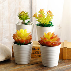 Flat white multi-meat plant ceramic flowerpot thumb pot table pot potted modern European and America CD06520H - 1