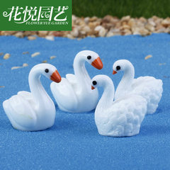 Swan resin decoration micro landscape decoration multi-meat jewelry Zakka creative gift decoration r White swan