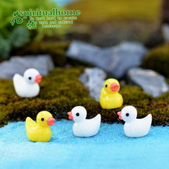 Small yellow duck moss micro-landscape pieces of multi-meat jewelry zakka pieces of resin crafts cre Yellow duck