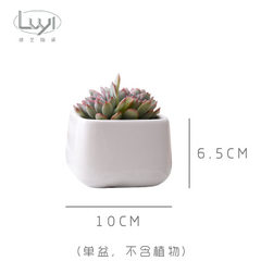 Simple white creative mini poly-meat ceramic Nordic small round horn drum belly ladder flowerpot zak Small northern European trapezoid (without plants) 10 * 6.5 * 8.8 the widest