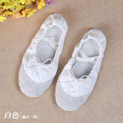 Cat`s paw shoes dancing shoes, belly dancing training shoes, dancing shoes, belly dancing shoes, bal white 25 #
