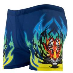 Dacron printing swimwear professional training adult men`s flat Angle swimsuit sexy hot spring manuf Fire tiger All code