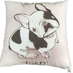 Pillow wholesale super soft plush fabric pillow by the company activities can be customized promotio 1 45 * 45 cm