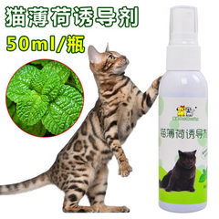 Cat peppermint spray 50ml natural cat-teasing product can improve the excitement of cats Spray cat toys 50 ml