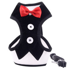 Small dog evening dress with corset plus traction rope dog breathable net cloth bowknot pet corset w black s.