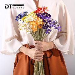 DT 紫罗兰 多色质朴艺术干花花束批发家居软装拍摄道具背景装饰 橙色(12支一束)
