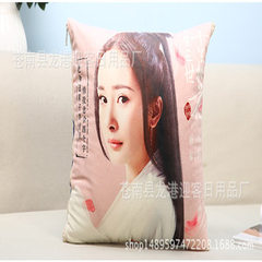 Sansheng iii holding pillow ten li peach blossom factory customized velvet holding pillow cushions f All kinds of 40 * 40 cm