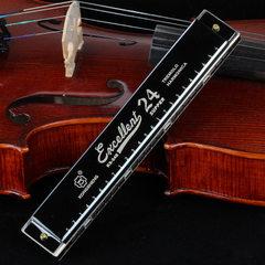 孔声C调口琴24孔复音口琴成人学生演奏儿童初学入门乐器口琴 MH-24亮光黑色