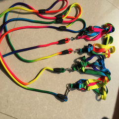 [factory direct selling] wholesale and retail pet nylon colorful round rope pet strap traction rope 7 colour