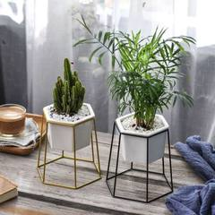 Original flowers live under the Nordic simple iron art hexagon ceramic multi-meat floral apparatus g Gold single basin stand a set Basin: opposite Angle 12.6cm opposite edge 11.4cm high 8cm iron frame: mouth 13cm bottom 16