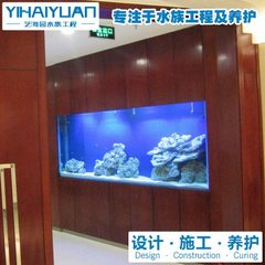 | for large fish tank design and construction to undertake customized fish tank maintenance services custom