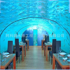 Factory direct installation of large acrylic tunnel aquarium tank organic glass fish tank customized medium