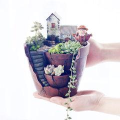 如果创意款zakka空中花园diy盆栽微景观树脂多肉花盆摆件批发 空中花园花盆