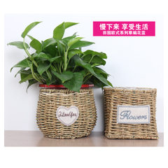Horticultural flowerpot flower arranging device many flesh green plant flowerpot weaving willow weav Primary color round mouth type A