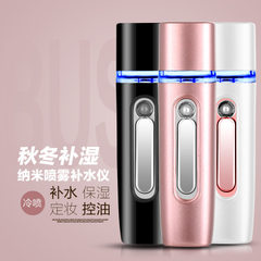 Portable hydrator nanometer sprayer rechargeable treasure type hand moisturizer facial humidifier an Ground rose gold