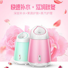 Selling nanometer beauty steaming face apparatus home beauty moisturizing face moisturizer manufactu pink