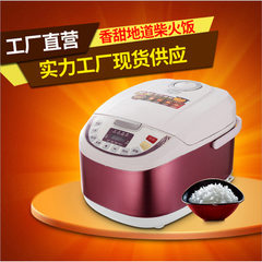 Manufacturer direct selling rice cooker deluxe intelligent party cooker gifts household electric ric purple