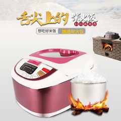 Factory direct sale household electric rice cooker micro - computer intelligent recipe clay pot ma b purple