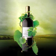 高档法国原酒红酒整箱特价赤霞珠干红葡萄酒单支原装原瓶批发