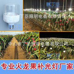 LED plant dragon fruit fill light lamp growth lamp transparent cover flat head pillar shape 15W wate 15 w yellow light