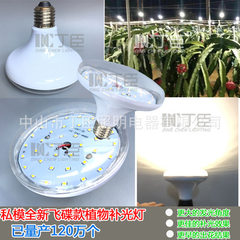 Dingchen lighting led dragon fruit anti-season patch lamp plant flower lamp transparent cover waterp 15 w.