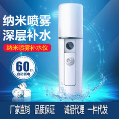 Hot style charged convenient nanometer spray meter hand hydrator facial humidifier beauty apparatus  white