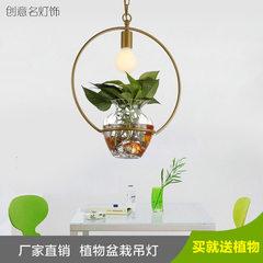 田园玻璃花盆铁艺花草植物盆栽吊灯创意几何绿色阳台餐厅吧台灯具 金黄色