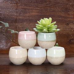 Mini thumb flowerpot macaron succulent flowerpot egg cup succulent flowerpot Korean flowerpot 8266 Five colours egg cup About 5.5 * 5.5 * 4.5