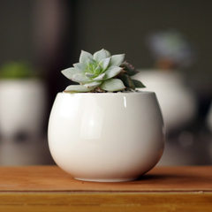 Simple white creative mini multi-meat ceramic drum floret tank zakka potted potted fashion flowerpot Milk white The width of mouth 6 is 7CM and the height is 5.5cm