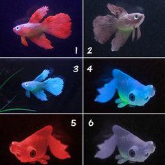 Aquarium construction aquarium decorative rubber s Red betta fish no. 1
